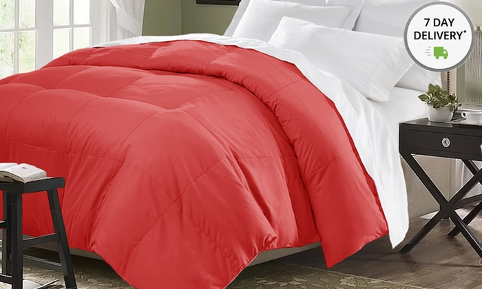 All Season Down Alternative Comforter: All Season Down Alternative Comforter. Multiple Options Available. Free Shipping and Returns.