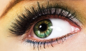 Bediha Kuzu - Institut der Schönheitspflege Babor: Professionelle Wimpernverlängerung, opt. mit Refill im Institut der Schönheitspflege Babor (71% sparen*)