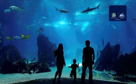 2 places pour la visite complète de l'aquarium à 20,50 € à laquarium Mare Nostrum