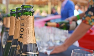 Houston Cellar Classic: Two Early-Bird General or VIP Tickets to Houston Cellar Classic at The Tasting Room Uptown Park (Up to 38% Off)