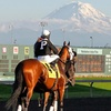 Emerald Downs Washington Cup –Up to 49% Off Horseracing