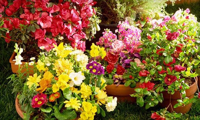 Nixa Hardware & Seed Co - Nixa: $10 for $20 Worth of Plants and Garden Supplies at Nixa Hardware & Seed Co