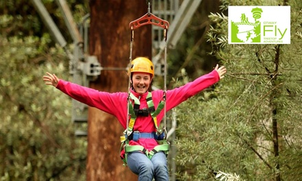 $85 for Zipline Tour for One Adult at Otway Fly Up to $120 Value
