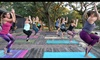 Wild Heart Yoga - Westlake Medical Center: $65 for One Month of Unlimited Yoga Classes at Wild Heart Yoga ($150 Value)
