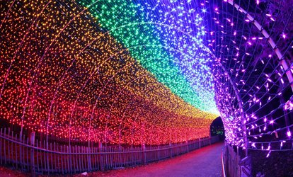 image for Tickets to PNC Festival of Lights at Cincinnati Zoo and Botanical Garden (Up to 21% Off)
