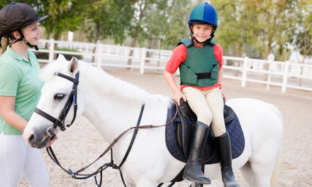 Private Riding Lesson for 1 or 2, or a Starter Class for 1 or 2 Kids Age 3–8 at Gallery Farm (Up to 52% Off)