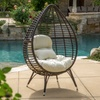 Dermot Teardrop Wicker Lounge Chair