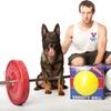 Varsity Ball Indestructible Dog Toy