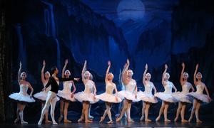 """""""Schwanensee"""" mit dem klassischen Russischen Ballett: """"Schwanensee"""" vom Klassischen Russischen Ballett aus Moskau an verschiedenen Terminen in 30 Städten (bis zu 61% sparen)"""