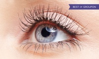 3D or Mink Semi-Permanent Eyelash Extensions with Bee Beautiful