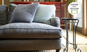 Plural Clean – Costa Azul: Plural Clean: lavagem de tapete ou lavagem e higienização de sofá (com opção de cadeiras)