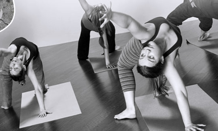Laughing Frog Yoga - West Los Angeles: 10 or 20 Yoga Classes at Laughing Frog Yoga (Up to 80% Off)