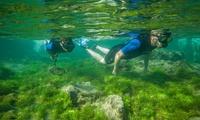 Tour guiado de snorkel para 2, 4 o 6 personas desde 24,95 € en Salitre Sport