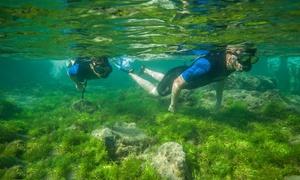 Salitre Sport: Tour guiado de snorkel para 2, 4 o 6 personas desde 24,95 € en Salitre Sport