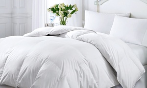 Kathy Ireland Essentials White Down and Feather Comforter