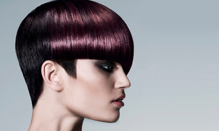 Re-Style, Cut and Blow-Dry with Conditioning Treatment at Contemporary Salon Darlington (60% Off)