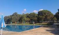 Acceso a la piscina y menú para 2 o 4 personas o para un niño desde 7,50 € en Paradís del Vilar