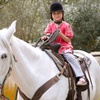50% Off Horseback-Riding Summer Camp
