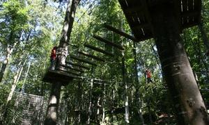 BOSCOPARK: Ingresso per 1 o 2 persone al Parco Avventura Boscopark