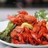 52% Off Seafood