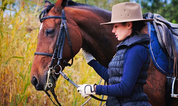 Two Hats Training Stable - Prince Tuscon: Two-Hour Horseback-Riding Lesson for One or Two at Two Hats Training Stable (Up to 57% Off)