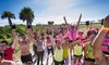 The X Run - Historic Virginia Beach Park: The X Run: Adult-Themed Obstacle Course and Fun Run for One, Two, or Four (Up to 68% Off)