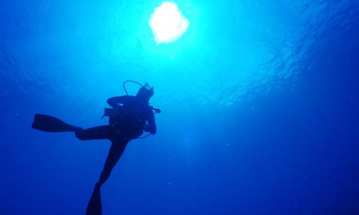 ダイビングクラブ アクアギフト - ダイビングクラブ アクアギフト: 91%OFF【4,940円】無重力を体感しながら、海の生き物たちと水中散歩を≪ライセンス取得コース(BSAC・スクーバダイバー)≫1名から参加OK@ダイビングクラブ アクアギフト