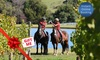 Horseback - Main Ridge: From $79 for Horseback Winery Tour with Horseback (From $130 Value)