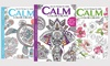 """Blue Dolphin Magazines: $29.99 for a One-Year, Six-Issue """"Calm Color Create"""" Subscription from Blue Dolphin Magazines ($39.97 Value)"""