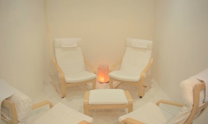 The Salt Therapy Centre: From $45 for Salt Therapy Session for Two People at The Salt Therapy Centre ( total value up to $280)