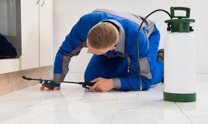 Pestop: Pest Control Services from R275 for One Room with Pestop (Up to 55% Off)