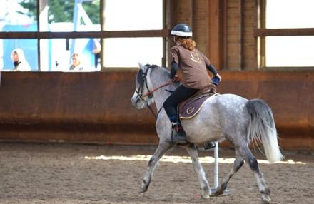 3 cours dessai à poney ou à cheval pour enfants ou adultes dès 22€ à lEcurie Christophe Juncker Equigeiss Fun Jump