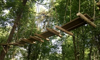 High Rope Course Experience for One, Two, or Four at Arial Trail (Up to 46% Off)