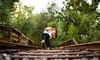 Amber Fallon Photo - San Diego: One-Hour Engagement or Family Portrait Session from Amber Fallon Photo (Up to 60% Off)