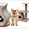 Up to 34% Off Cat Furniture with Teasers