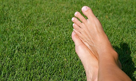 One Laser Toenail-Fungus Treatment on Up to 5 or 10 Toes at American Foot & Leg Specialists (Up to 70% Off)