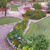 Up to 50% Off at Moose Meadow Mini Golf