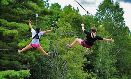 2.5-Hour Zipline/Ropes-Course Outing for 2 or 4, or Birthday Party at Monkey C Monkey Do  (Up to 51% Off)