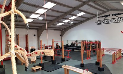 image for One- or Four-Week Gym Pass at Calisthenics Parks Gym (Up to 60% Off)