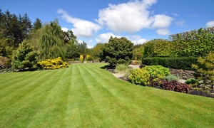Greensleeves Maidenhead: Up to 400 Sq Metres of Lawn Treatment with Greensleeves (Up to 60% Off)