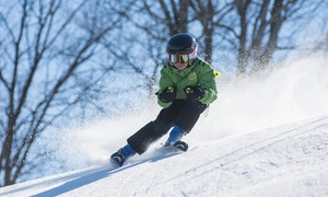 Skilift Herchenhainer Höhe: Ski-Tagespass für 1 oder 2 Personen bei Skilift Herchenhainer Höhe (bis zu 37% sparen*)