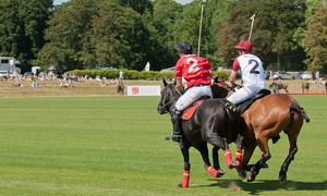 Beaufort Polo Club: Gloucestershire Festival of Polo: Day Ticket for Up to Four People, 18–19 June at Beaufort Polo Club (Up to 68% Off)