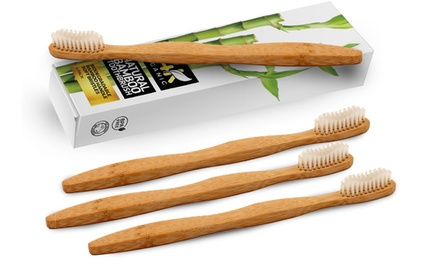 24K Organic Natural Bamboo Toothbrushes (4-Pack)