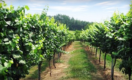 6.5-Hour Premier Wine Tour (a $150 value) - Travels in Wine Tours in Hendersonville
