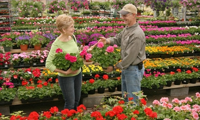 Merrifield Garden Center - Multiple Locations: $25 for $50 Worth of Plants and Landscaping Supplies at Merrifield Garden Center. Three Locations Available.