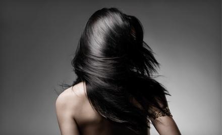 Palazzi Hair Salon - Palazzi Hair Salon in Campbell