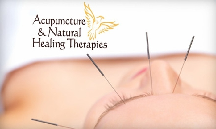 Acupuncture & Natural Healing Therapies - Cielo Vista: $30 for a Consultation and Acupuncture Treatment at Acupuncture & Natural Healing Therapies ($75 Value)