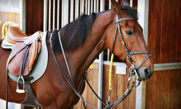 Stone Field Stables - Hilltop: One, Three, or Five Horseback-Riding Lessons at Stone Field Stables in Coopersburg (Up to 72% Off)