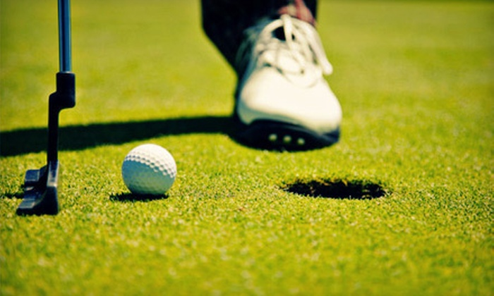 The Powell Golf Academy - Powell: Private Golf Lesson, Youth Golf School, or Game Analysis at The Powell Golf Academy in Powell (Up to 56% Off)