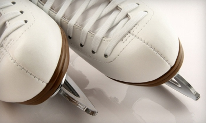 Way To Go Sports - Multiple Locations: $20 for 10 Ice-Skate Sharpenings at Way To Go Sports ($40 Value)